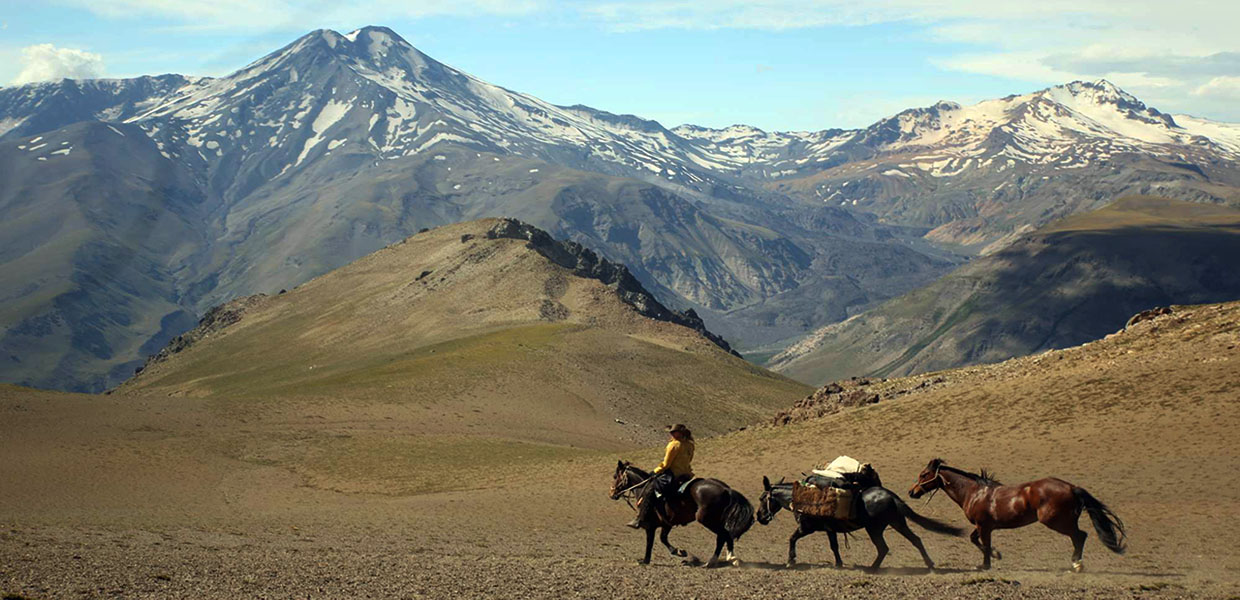 authentic horse trekking chile - chile Horse riding