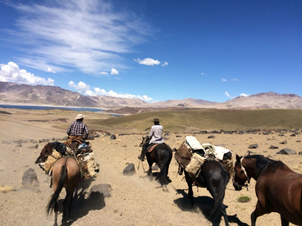 horse riding through mountains in chile