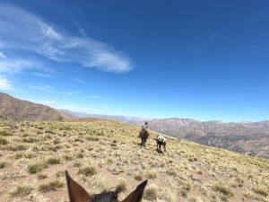 Freiheit über den Bergen in Chile